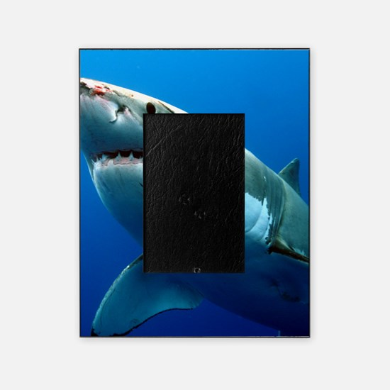 GREAT WHITE SHARK 3 Picture Frame