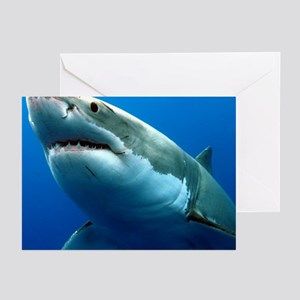 GREAT WHITE SHARK 3 Greeting Cards (Pk of 10)