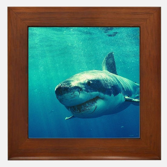 GREAT WHITE SHARK 1 Framed Tile