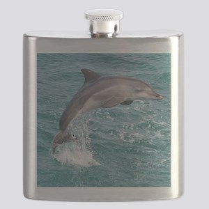 DOLPHIN Flask