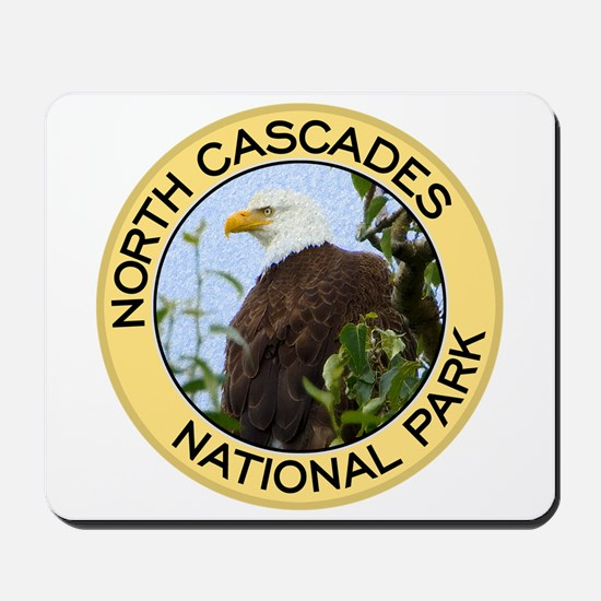 North Cascades NP (Bald Eagle) Mousepad