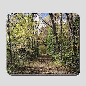 Autumn Trail Mousepad