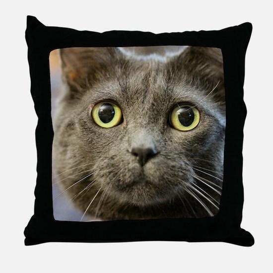 Cute Russian blue cat Throw Pillow