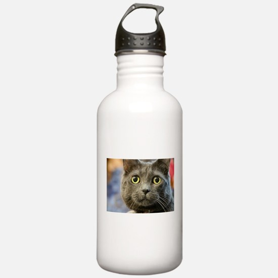 Cute Blue cat Water Bottle
