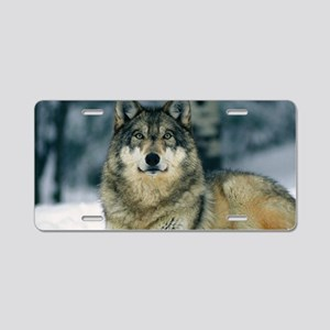 Wolf In The Snow Aluminum License Plate