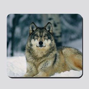 Wolf In The Snow Mousepad