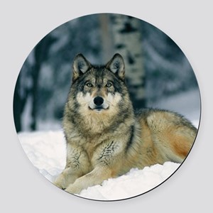 Wolf In The Snow Round Car Magnet