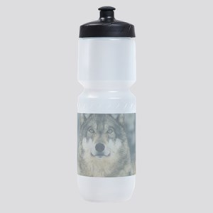 Wolf In The Snow Sports Bottle