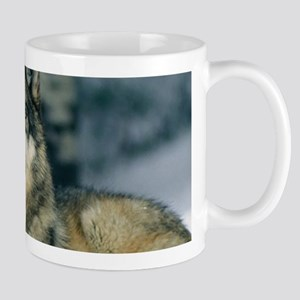 Wolf In The Snow Mugs