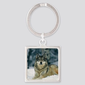 Wolf In The Snow Keychains