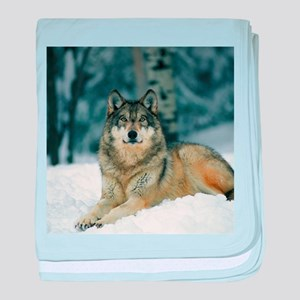 Wolf In The Snow baby blanket
