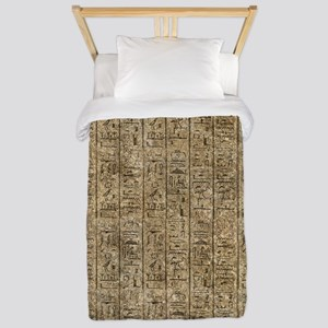Egyptian Hieroglyphics Twin Duvet