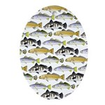 Seatrout and Drum Pattern Oval Ornament