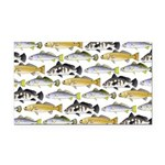Seatrout and Drum Pattern Rectangle Car Magnet