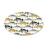 Seatrout and Drum Pattern Oval Car Magnet
