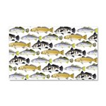 Seatrout and Drum Pattern Car Magnet 20 x 12