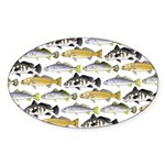 Seatrout and Drum Pattern Sticker