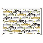 Seatrout and Drum Pattern Banner