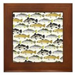 Seatrout and Drum Pattern Framed Tile
