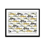 Seatrout and Drum Pattern Framed Panel Print