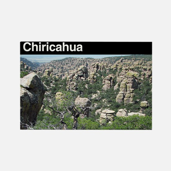 Chiricahua National Monument Rectangle Magnet