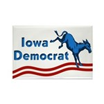 Iowa Democrat Magnet