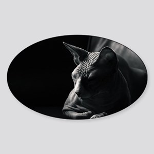Contemplation Moment Sticker (Oval)