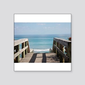 Ocean Life Sticker