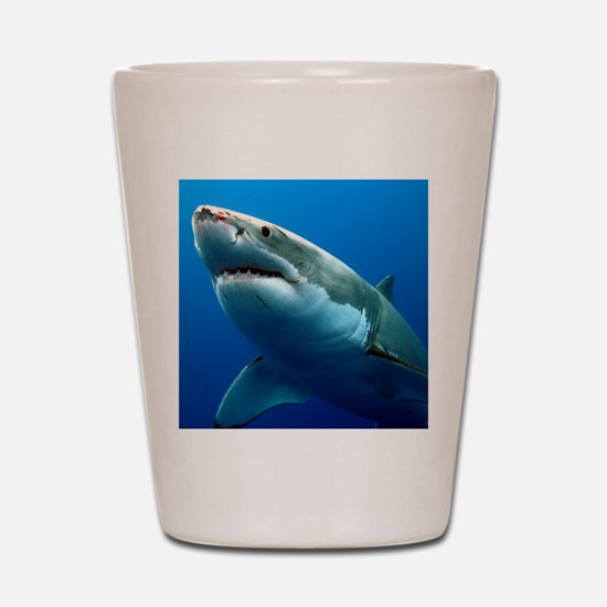 GREAT WHITE SHARK 3 Shot Glass
