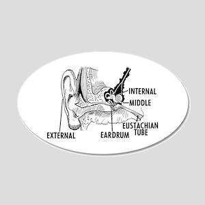 Ear Diagram 20x12 Oval Wall Decal