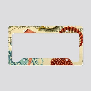 romantic seashells shabby chi License Plate Holder