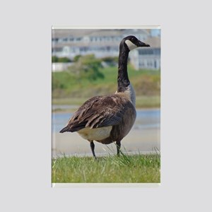 Goose by the Sea Rectangle Magnet