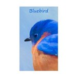 Bluebird Sticker (Rectangle 10 pk)