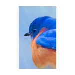 Bluebird Sticker (Rectangle 50 pk)