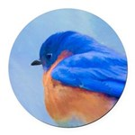Bluebird Round Car Magnet