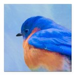 Bluebird Square Car Magnet 3