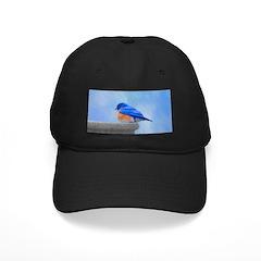 Bluebird on Birdbath Baseball Hat