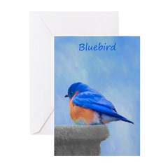 Bluebird on Birdbath Greeting Cards (Pk of 20)