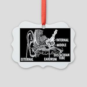 Ear Diagram Picture Ornament