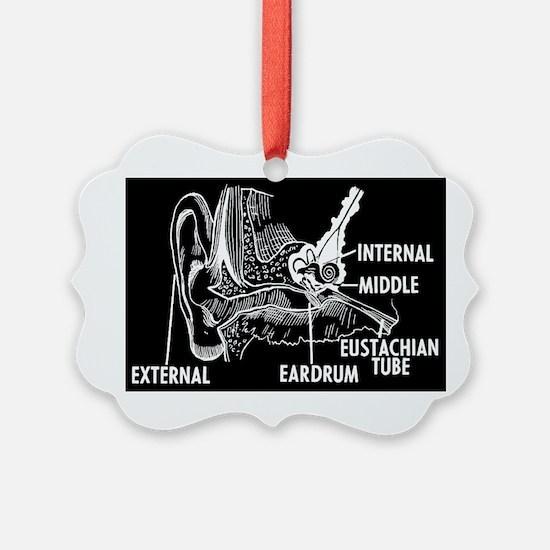 Ear Diagram Ornament