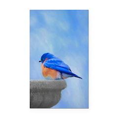 Bluebird on Birdbath Rectangle Car Magnet