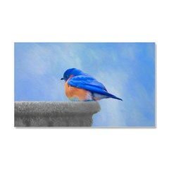 Bluebird on Birdbath Car Magnet 20 x 12