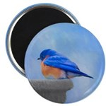 Bluebird on Birdbath Magnet