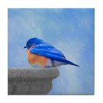 Bluebird on Birdbath Tile Coaster