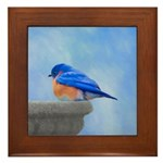 Bluebird on Birdbath Framed Tile