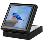 Bluebird on Birdbath Keepsake Box