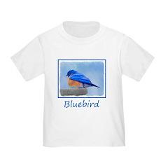 Bluebird on Birdbath T