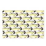 Amazon Pellona fish Pattern Postcards (Package of
