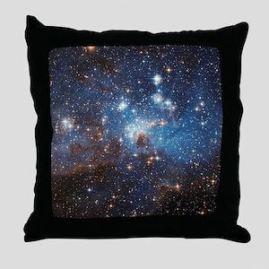 LH_95 Throw Pillow