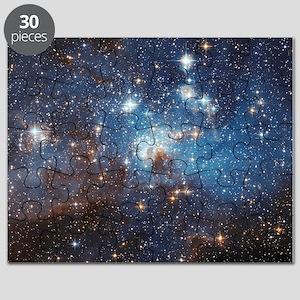 LH_95 Puzzle
